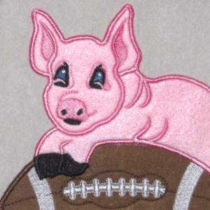 FOOTBALL  ARE YOU READY FOR SOME PIGSKIN