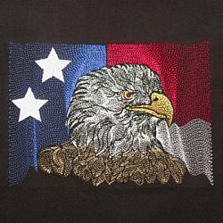 EAGLE ON USA FLAG 5X7