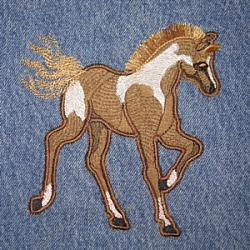Painted Pony Applique 5X7